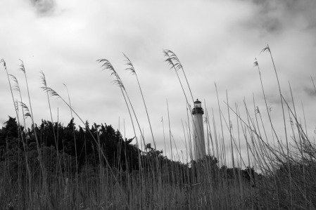 Cape May Lighthouse (Black and White)